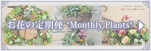 monthly-plants